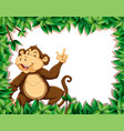 monkey in nature frame vector image vector image
