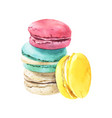 watercolor macaroons stack vector image vector image