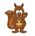 Squirrel with cookie vector image