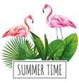slogan summer time tropical leaves flamingo white vector image vector image