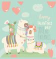 cartoon mexican white alpaca llamas couple with vector image