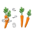 Cartoon ripe orange carrot vegetable vector image