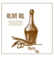 Olive branch with bottle hand drawn sketch vector image