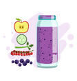 apple cucumber red currant and blueberry vector image vector image