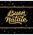 Banner with Merry Christmas lettering in italian vector image vector image