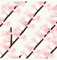 cherry blossom pattern vector image vector image