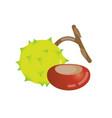 chestnut icon design vector image vector image