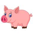 Cute baby pig cartoon vector image vector image