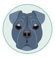 Digital boxer dog face vector image