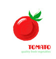 fresh tomato isolated on white background vector image vector image