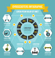 gyroscooters infographic concept flat style vector image vector image