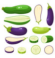 bright of colorful eggplant vector image