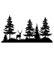 deer in a pine forest vector image vector image
