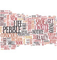 figure out the pebble in your shoe text vector image vector image