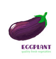 fresh eggplant isolated on white background vector image vector image