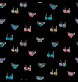 seamless pattern with bra and panty vector image