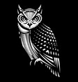 stylish owl side view monochrome vector image
