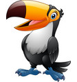 cartoon funny toucan isolated on white background vector image vector image