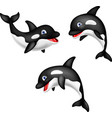 cartoon orca collection set vector image vector image