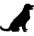 golden retrievet silhouette vector image