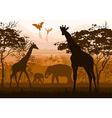 nature with wild animals giraffe elephant flamingo vector image vector image