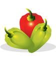 Sweet pepper vector image vector image
