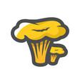 chanterelle fresh mushroom icon cartoon vector image