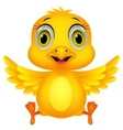 Cute baby chicken cartoon vector image