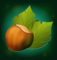 Hazelnut with green leaves icon