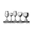 stemware types vector image vector image