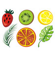 summer icon collection vector image