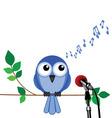 bird song vector image