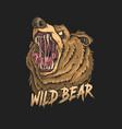 Angry bear head
