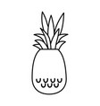 delicious pineapple fruit vector image
