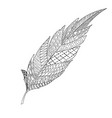 monochrome hand drawn zentagle feather for vector image