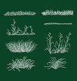 set chalk sketch grass silhouettes vector image vector image