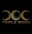 triple moon magic and astronomy vecor t-shirt vector image vector image