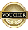 voucher gold icon vector image vector image