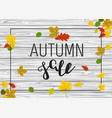 wooden autumn border leaf background vector image