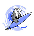 Surfer Dolphin vector image