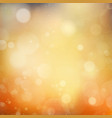 Autumnal natural bokeh with sun EPS 10 vector image vector image