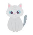 cute little cat pet animal cartoon isolated design vector image vector image