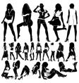 fashion sexy women vector image
