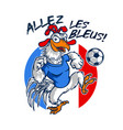 france international rooster football mascot vector image vector image