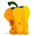 Rotten yellow bellpepper on white background vector image vector image