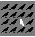 white crow among black crows vector image