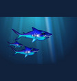 wild predator sharks blue background small flock vector image vector image