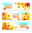 banners with fall leaves autumn season discount vector image