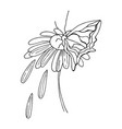 doodle flower drawing vector image