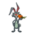 Funny cartoon rabbit eating a carrot vector image